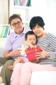 Grand parents with grand daughter on christmas — Stock Photo