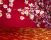 Chinese new year cherry blossom — Stockfoto