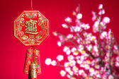 Chinese new year background — Stock Photo