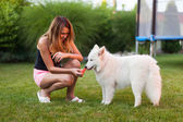 Lady playing with her dog — Stock Photo