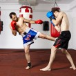 Постер, плакат: Kickbox fighters sparring in the gym