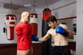 Boxer training in the gym — Stock Photo