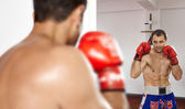 Boxer looking in the mirror — Stock Photo