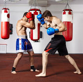 Kickbox fighters sparring in the gym — Foto de Stock