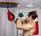 Working with the speed punchbag — Foto de Stock
