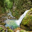 Galbenei gorge waterfall — Stock Photo #53490779