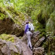 Hiker lady with backpack on trail — Stock Photo #53491233