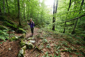 Woman with backpack hiking into the forest — Stockfoto