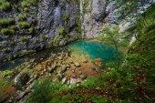 Karstic spring in Romania — Stock Photo