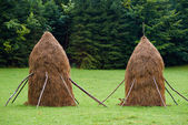 Haystacks in the countryside — Stock Photo