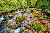 River flowing through a gorge — Stock Photo