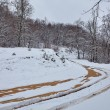 Muddy country road covered with snow — Stock Photo #65148519