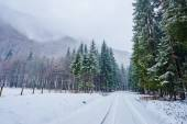 Snowy road in mountains — Stock Photo