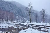 River flowing trough the forest on wintertime — Stock Photo