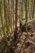 Farmer using a logging tractor — Stock Photo
