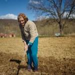 Senior woman sowing potatoes — Stock Photo #70660727