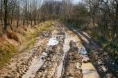 Muddy wet countryside road — Stock Photo