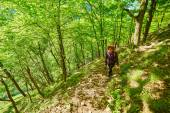 Redhead woman walking on a mountain trail — Stock Photo