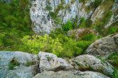 Rocky ravine on mountains — Stock Photo