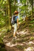 Woman on a fir forest trail — Stock Photo