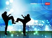Martial art illustration — Stock Vector