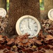 Fall time season clocks leaf forest background — Stockfoto #83293900