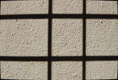 View of Grained Wall — Stock Photo