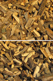 Set of wood textures  — Stock Photo