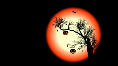 Animated Halloween Background. — 图库视频影像