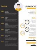 Contrast resume cv design  — Stock Vector