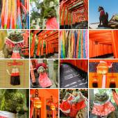 Collection of Fushimi Inari Taisha Shrine scenics — Foto Stock