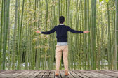 Looking into the bamboo forest — Stock Photo