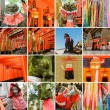 Постер, плакат: Collection of Fushimi Inari Taisha Shrine scenics
