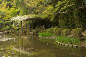 The scenery of Japanese garden near Heian Shrine. — Stock Photo