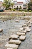 Stones and stone tortoise — Stock Photo