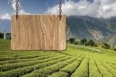 пустой деревянный знак — Стоковое фото