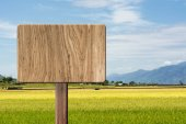 Blank wooden sign — Stock Photo