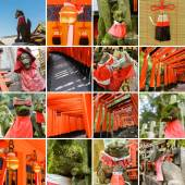 Collection of Fushimi Inari Taisha Shrine scenics — Stock Photo