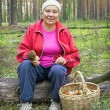 Woman collect mushrooms in a pine forest — Stock Photo #52769843
