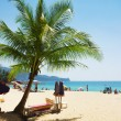 Beach in Phuket, light shade from the palm trees — Stock Photo #67364489