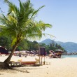 Beach in Phuket, light shade from the palm trees — Stock Photo #67467695