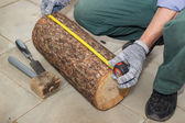 Master measures the length billet of logs — Stock Photo