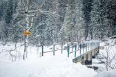 Eibsee at winter season — Stock Photo