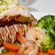 Lobster Tail with Shrimp and Broccoli — Stock Photo #52519349