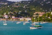 Green Sailboat among White Boats — Stockfoto