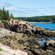 Rocky Coast Near Bar Harbor — Stock Photo #59586057