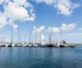 Белые высокие парусные шлюпки с мачтой в синей гавани — Стоковое фото
