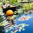 Orange Ball and Lilly Pads — Stock Photo #62153959