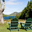 Green Adirondack Chairs Overlooking Lake — Stock Photo #67044845