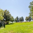Green Hill in Denver Park — Stock Photo #68144465